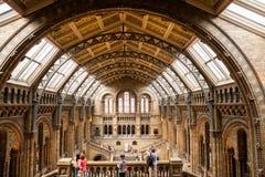 LONDRES, Reino Unido, museu da história natural Foto de Stock