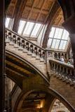 LONDRES, Reino Unido, museu da história natural Fotografia de Stock