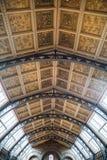 LONDRES, Reino Unido, museu da história natural Imagem de Stock Royalty Free