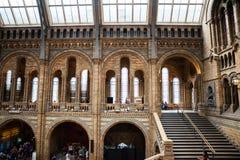 LONDRES, Reino Unido, museu da história natural - construção e detalhes Fotografia de Stock