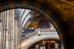 LONDRES, Reino Unido, museu da história natural - construção e detalhes Foto de Stock
