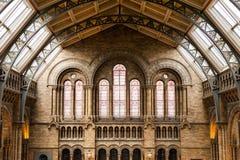 LONDRES, Reino Unido, museu da história natural - construção e detalhes Imagem de Stock