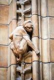 23 07 2015 LONDRES, Reino Unido, museu da história natural - detalhes Fotos de Stock