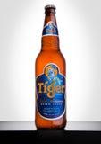 LONDRES, REINO UNIDO, O 15 DE DEZEMBRO DE 2016: A garrafa de Tiger Beer no fundo branco, lançada primeiramente em 1932 é cerveja  fotografia de stock