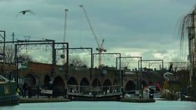 LONDRES, REINO UNIDO - 2016 02 19: Pájaros sobre el canal del regente en Camden Lock metrajes