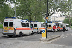 Londres/Royaume-Uni - 16/06/2012 - fourgons de police métropolitains britanniques dans une ligne Photographie stock libre de droits