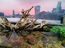 Londyński denny życie Zdjęcia Royalty Free