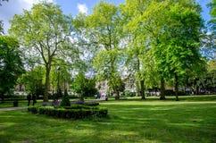 Londyński miasto, Anglia/: Drzewa w Russell kwadrata parku zdjęcia royalty free