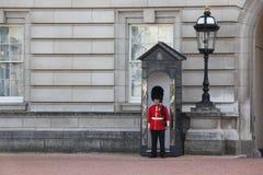 LONDYN, ANGLIA CZERWIEC 19, 2011: Sentry grenadier Chroni p Zdjęcie Royalty Free