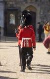 LONDYN, ANGLIA - WRZESIEŃ 09 2015: Windsor kasztel - grenadier Fotografia Stock