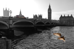 Londyn most z domami parlament Obraz Stock