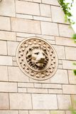 23 07 2015 LONDYN, UK, historii naturalnej muzeum - szczegóły Zdjęcia Royalty Free