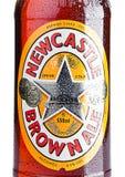 LONDYN, UK - LISTOPAD 01, 2016: Zimna butelka Newcastle Brown Ale piwo Wszczynający w 1927 Colonel Jim furtianem po połączenia o Zdjęcie Royalty Free