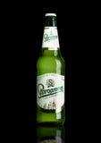 LONDYN, UK - MARZEC 15, 2017: Butelka Staropramen premii piwo na czarnym tle Staropramen browar zakładał w Praque wewnątrz Obraz Royalty Free