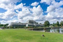 LONDYN, WRZESIEŃ - 7: Palmowy dom przy Kew ogródami na Wrześniu Zdjęcie Stock