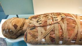 Londyn, Zjednoczone Królestwo/- 03/21/2019: Mamusia w British Museum pokazywać na Egiptian wystawie zdjęcia royalty free