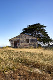 Lone abandoned vacant house with tree against blue skies. Up on one of Monterey Counties& x27; dunes, a short walk from the Pacific Ocean royalty free stock photography
