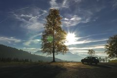 Lone Autumn Tree and Car in Front of Mountain Silhouettes. Lone autumn tree and a car in front of Mountains. Panorama Royalty Free Stock Photo