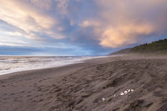 Lone beach Stock Photography