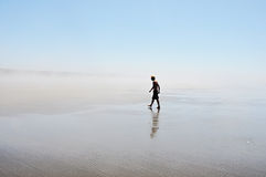 Lone Beach Walker Royalty Free Stock Photography