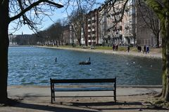 Lone bench Royalty Free Stock Images