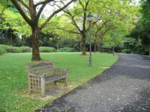 Lone bench in park Stock Images