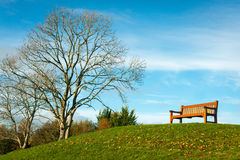 Lone bench in park. On bright sunny Autumn day Royalty Free Stock Photos