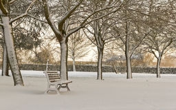 Lone Bench in a Park Covered with Snow Royalty Free Stock Images