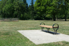 Lone bench in a park Royalty Free Stock Image