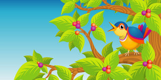 Lone bird singing on the branch of a tree on blue background Stock Images