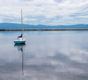 Lone blue and white sail boat in harbor