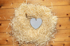 Lone blue wooden heart in a love nest Royalty Free Stock Images