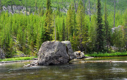 Lone Boulder in Yellowstone Stock Photos