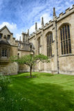 Lone Chestnut Tree in New Court, Trinity College. Lone Chestnut Tree in Tudor-Gothic Style New Court at Trinity College, University of Cambridge, England Stock Photo
