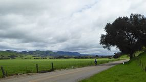 Lone cyclist on country road in valley around Santa Maria California. Valley area in Santa Maria, California wine country is explored by a lone cyclist on a stock photos
