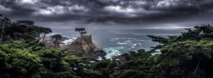 The Lone Cypress Tree along California Coast. Landscape with the Lone Cypress tree on a cliff by the Pacific Ocean showing resilience and strength by stock image