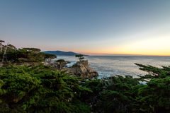 Lone Cypress tree view at sunset along famous 17 Mile Drive - Monterey, California, USA Royalty Free Stock Image
