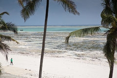Lone distant figure on beach in Michamwi-Pingwe Zanzibar,. Boat on the beach in Michamwi-Pingwe, Zanzibar Stock Photo
