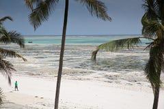 Lone distant figure on beach in Michamwi-Pingwe Zanzibar, Stock Photo