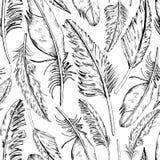 Lone_Feathers illustration de vecteur