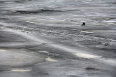 Lone fisherman Stock Image