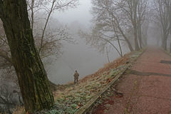 Lone fisherman. Auumn fog river fishman riverside stock photos