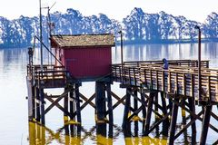 Lone Fisherman On Pier At Rivers Shoreline. Lone Fisherman On Wooden Pier At Rivers Shoreline In Early Morning royalty free stock photography