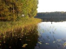lone fiskare Fotografering för Bildbyråer