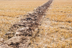 Lone furrow Stock Images