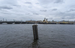A lone gull on the Neva river. Stock Image