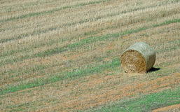 Lone haystack Stock Images