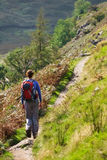 A lone hiker walking in the Lake District Stock Photography