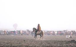 Lone horseman Royalty Free Stock Photos