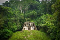 Lone Jungle Building. Ancient Building surrounded by Jungle Royalty Free Stock Photography